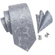 Set - pánská kravata Grey Paisley